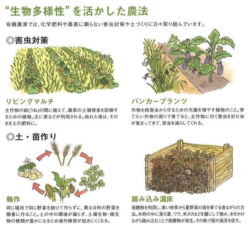 多様性を活かした農法